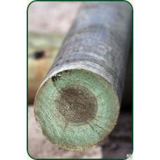 Деревянные опоры ЛЭП 9,5м
