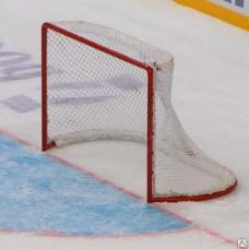 Ворота хоккейные с сеткой (тип-1)